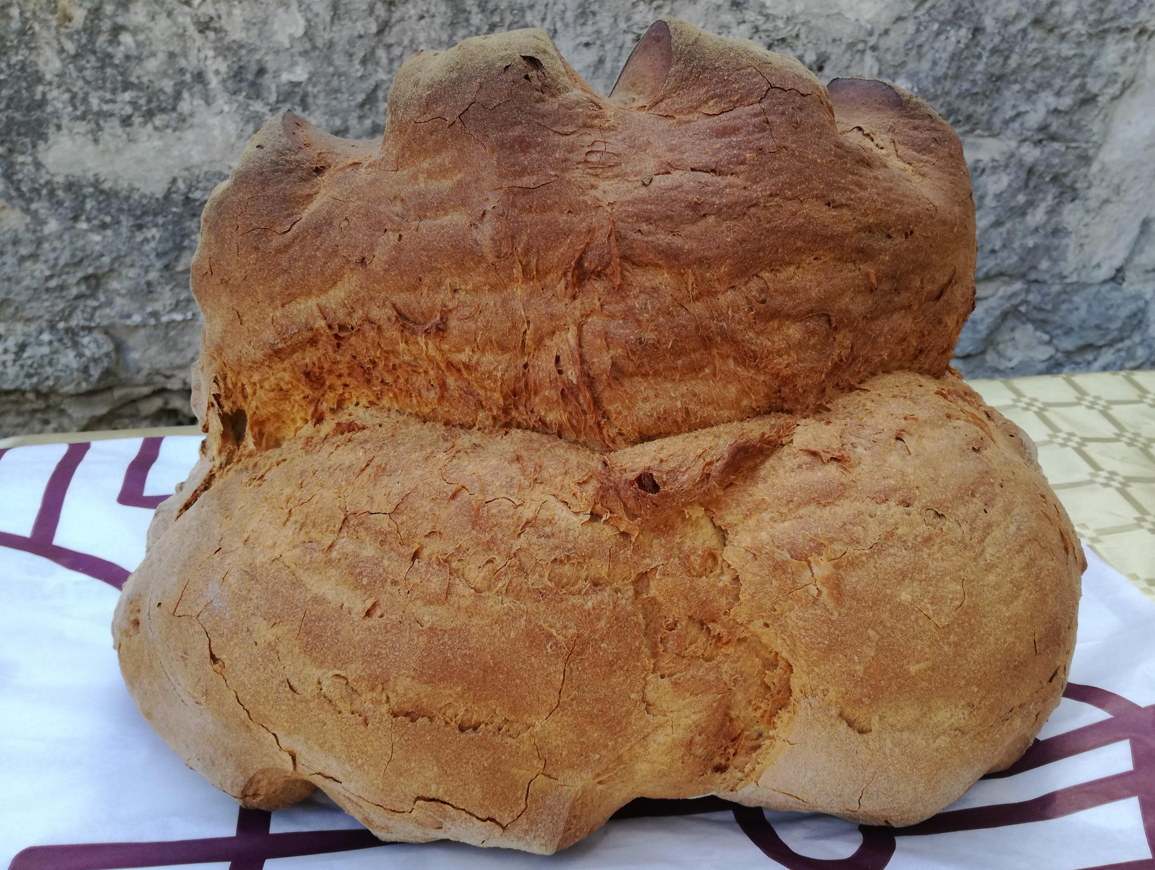 Pane&Olio a Matera: quando il gusto fa storia e piace alla scienza