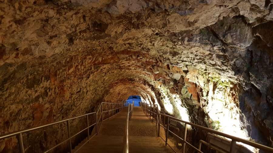 Alle Grotte di Castellana la Giornata Mondiale della biodiversità