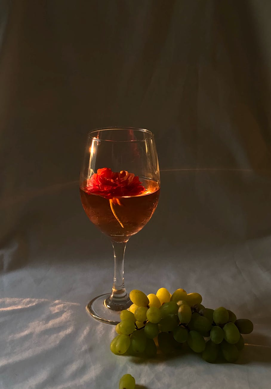 Nasce PugliaWineWorld, la piattaforma che valorizza le eccellenze vitivinicole